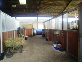 Covered Stable Yard